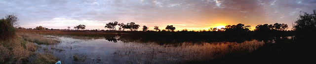 Okavango Panorama